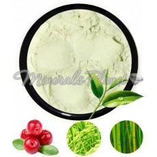 Праймер на основе зеленого чая Green Tea Rejuvenation (для жирной и норм. кожи)