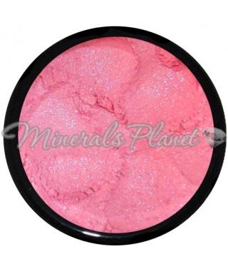 Тени Pink Petals