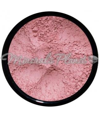 Минеральные румяна Mojave - southern magnolia minerals, свотчи