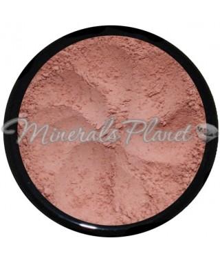 Минеральные румяна Rose beige 509 - face value cosmetics, фото, свотчи