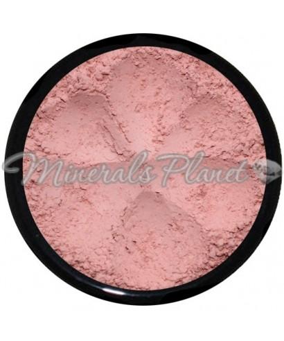 Минеральные румяна Bare & Natural  от Face Value cosmetics, фото, свотчи