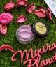 Минеральные тени Lavender Jave - Face value cosmetics, фото, свотчи