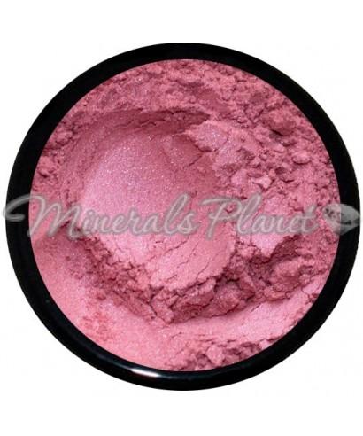 Румяна Petal lucy minerals фото, свотчи
