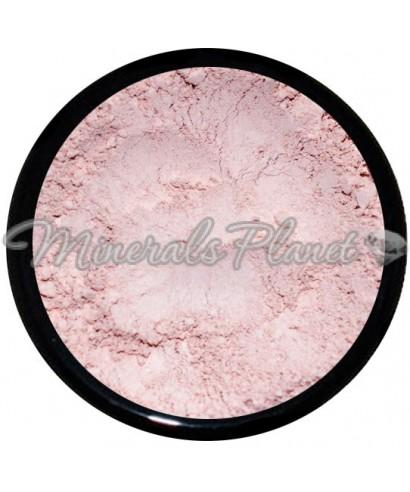 Минеральная пудра Bisque multi-task southern мagnolia minerals - фото свотчи