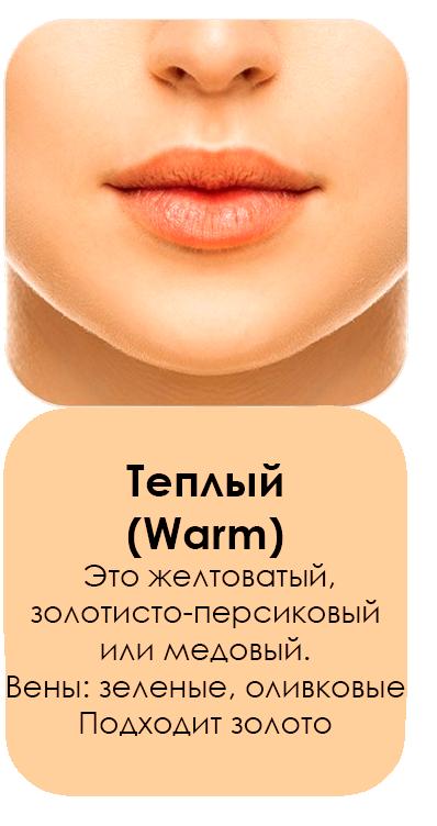 Теплый (warm)